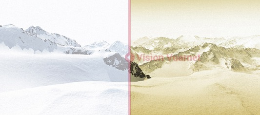 Vuarnet skilynx